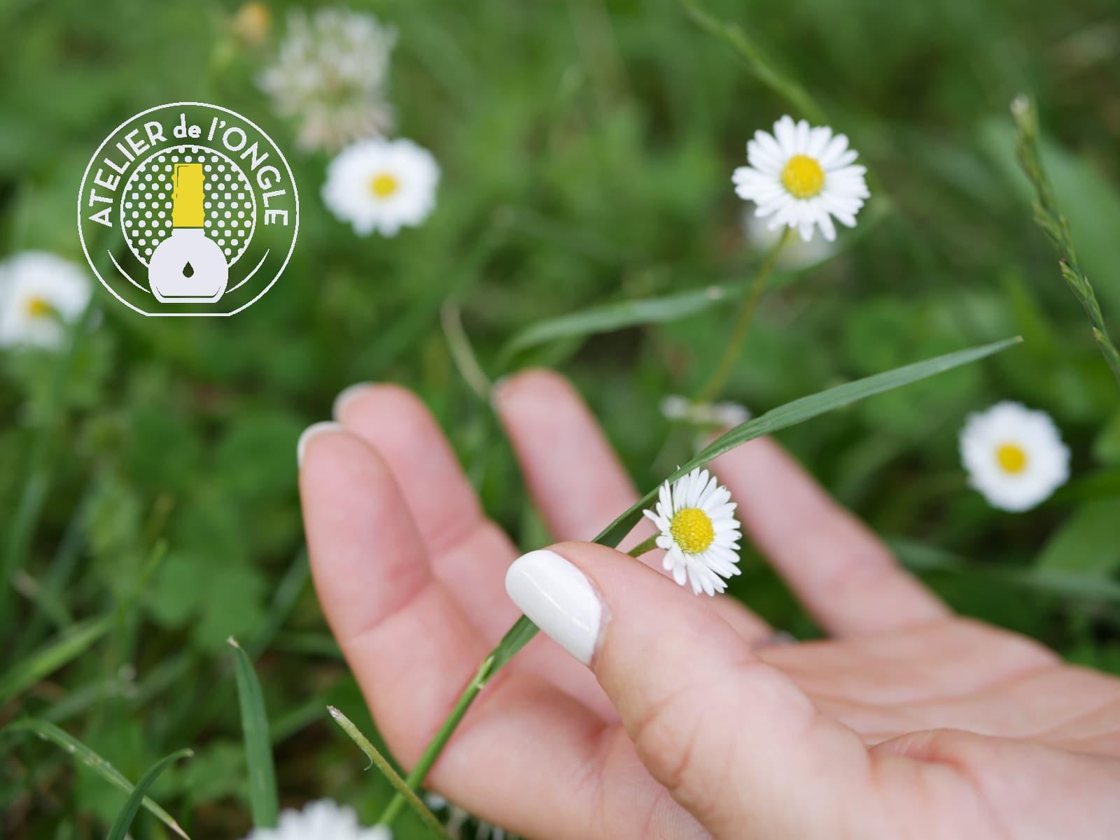 Vernis semi-permanent blanc accompagnée d'une paquerette realisée par Laurie Atelier de l'ongle